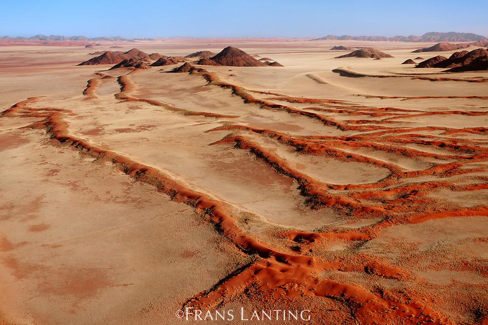 Vegetated sand dunes (aerial), NamibRand Nature Reserve, Namibia