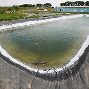 Larger dams on a sturgeon farm raising mainly starry sturgeons but also belugas and russian sturgeons. This farm Kavoar House is located outside Horia village, close to Danube Delta, Romania.