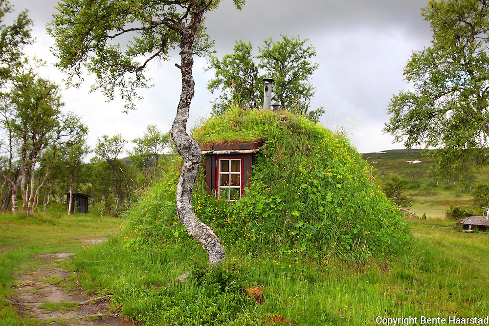 Gamme, traditional hous in the mountains, build by the south sami people of Saanti Sijte. Reindeer herders in Mid-Norway. Gamme, a traditional house in the mountains, build by the south sami people of Saanti Sijte. Reindeer herders in Mid-Norway.