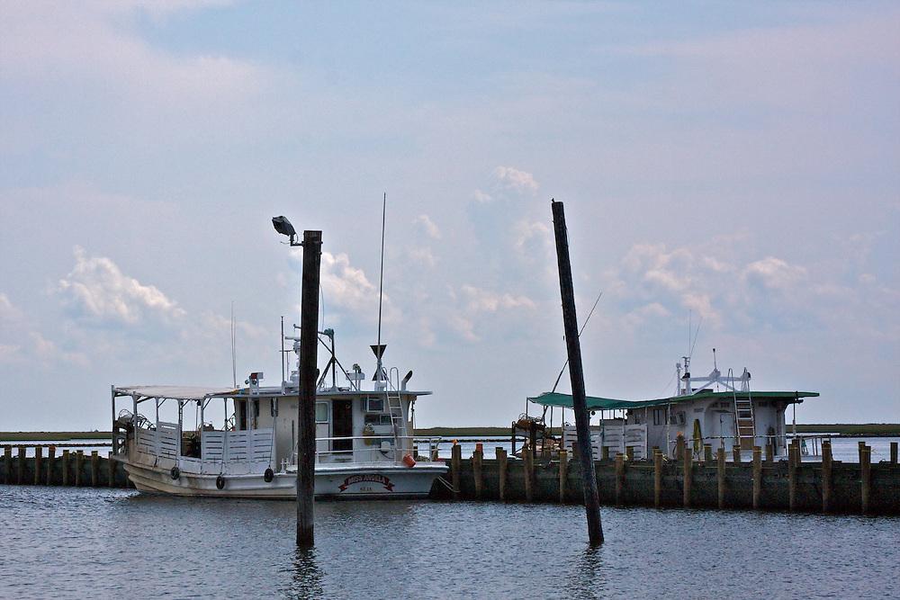 Crude pier made for oil boom deployment, Shell Beach, St. Bernard Parish, Louisiana