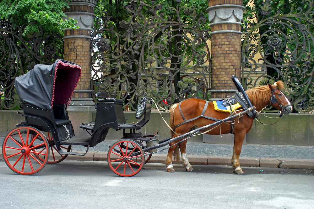 Europe, Russia, St. Petersburg. Horsedrawn Carriage awaits on an avenue in St. Petersburg.