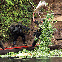 Anti-Narcotics police dump coca leaves, which are used to make cocaine, into a river where they were being transported in a canoe close to Tumaco, about 360 miles southwest of Bogota. The police target cocaine labs and fields throughout the country trying to combat the growth of the illegal drug. The U.S. has provided 1.3 billion dollars in aid as part of Plan Colombia, a U.S. backed initiative to eradicate coca from Colombia. According to the U.S. government coca production has actually gone up in the country since the plan became implemented. Colombia is the world's largest cocaine producer. (Photo/Scott Dalton)
