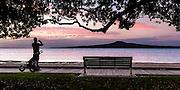 Man on Tamaki Drive boardwalk at sunset photographing Rangitoto Island. Auckland New Zealand.