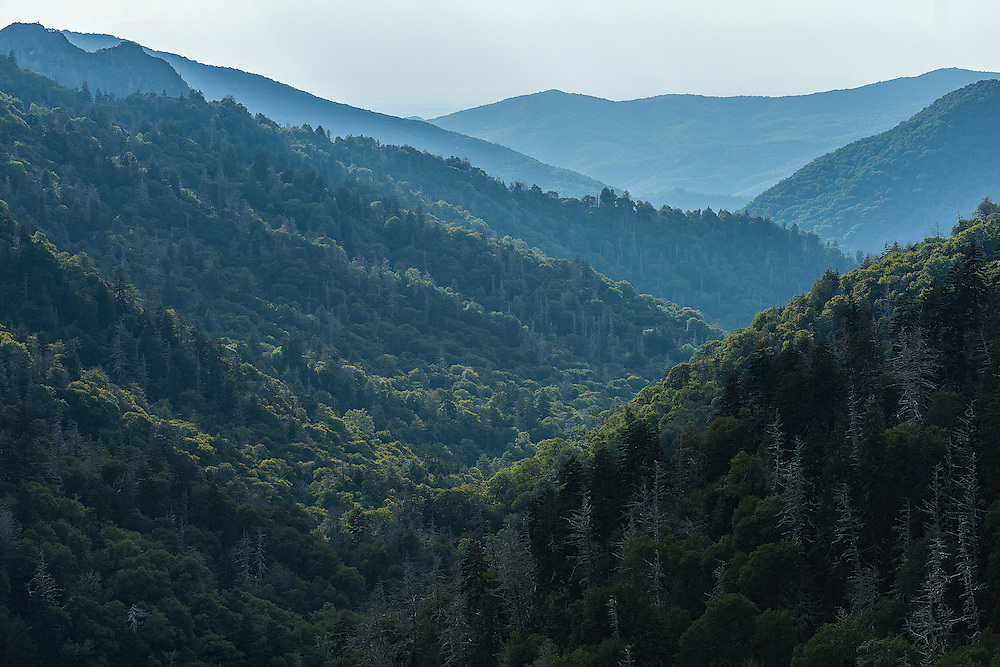Morton's Overlook at Great Smoky Mountains National Park