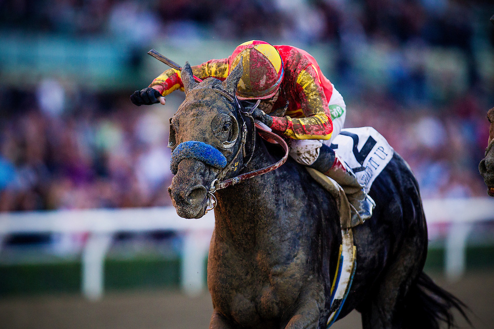 Shakin It Up with David Flores up defeats Cental Banker and Joe Talamo to win the Malibu Stakes at Santa Anita Park on Opening Day, December 26th, 2014 in Arcadia CA. (Alex Evers/ Eclipse Sportswire)