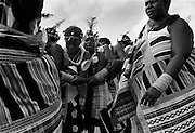 """IPLM0025 , South Africa, Venda, June 2001. Young """"maidens"""" take part in the Domba dance. The domba is part of an initiation process, some already have children though traditionally they are meant to be virgins."""