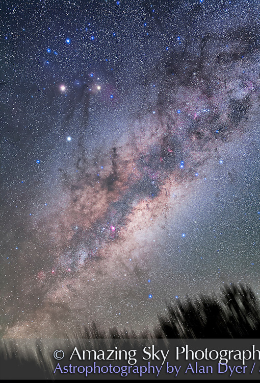 The centre of the Galaxy region in Sagittarius rising above the treetops, with the rich starfields of Scorpius and Sagittarius clearly visible despite the low altitude in the east due to the very transparent Australian skies. <br /> <br /> I shot this April 13, 2016 from Tibuc Cottage, near Coonabarabran, NSW. This image is framed to be suitable for a cover image. <br /> <br /> All of Scorpius and most of Sagittarius is visible, with the constellations coming up on their side as seen from Australia&rsquo;s southern latitude. <br /> <br /> Mars is to the left of Antares in Scorpius at top left, with Saturn below the Mars-Antares pairing. <br /> <br /> This is a stack of 4 x 2-minute exposures, tracked, for the sky, plus an additonal exposure through the Kenko Softon A filter to add the star glows to make the constellation patterns pop. The ground comes from another 4 exposures taken with the tracker motor off to minimize blurring. All with the 35mm lens at f/2 and filter-modified Canon 5D MkII at ISO 1600 on the iOptron Sky Tracker.
