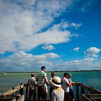 SARASOTA, FL -- October 2012 -- Visitors take a walk along the mangroves on a boardwalk at Ken Thompson Park on City Island in Sarasota, Florida.  (PHOTO / CHIP LITHERLAND)