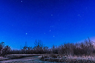 The constellations of Orion (centre), Taurus (at upper right), and Canis Major (lower left) in the dawn sky on a frosty November morning in the twilight and moonlight, taken from the backyard in southern Alberta. Orion&rsquo;s Belt points up to Aldebaran and the Hyades, and down to Sirius. <br /> <br /> This is a stack of 6 x 15 second exposures for the ground to smooth noise, and one 15s exposure for the sky, to prevent trailing. All with the Nikon D750 at ISO 2000 and Sigma 24mm lens at f/4.