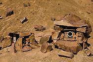 Camera trap Naybandsite 4, Naybandan Reserve, Iran