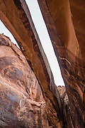 Morning Glory Bridge, Negro Bill Canyon, on BLM federal land near Moab, Utah, USA. The Navajo Sandstone of Morning Glory Natural Bridge spans 243 feet, making it the sixth largest rock span in the United States.