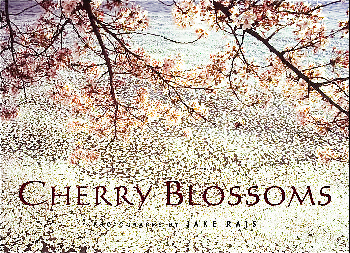 """""""Cherry Blossoms"""" Book Signed by Jake Rajs, Published by Rizzoli"""
