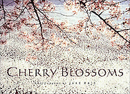"""Cherry Blossoms"" Book Signed by Jake Rajs, Published by Rizzoli"