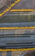 Vineyard - @Martine Perret - Margaret River aerial shot. 27 February 2014