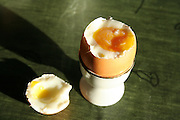 Eggs, the yellow one cocked with onion who gives the colour.