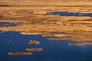Buena Vista Ponds at sunrise from Buena Vista Lookout, Malheur National Wildlife Refuge, southeastern Oregon.