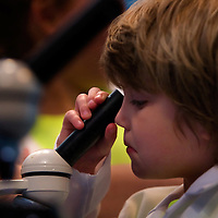 NAPLES, FL -- March 13, 2010 -- Nate Hedrick, 5, of Summit, New Jersey, center, looks through a microscope in the lab at leaves he collected during the Nature's Wonders program at The Ritz-Carlton in Naples, Fla., on Saturday, March 13, 2010.  The three hour programs let kids experience a more involved, educational nature program while parents get free time to enjoy themselves sans kids.
