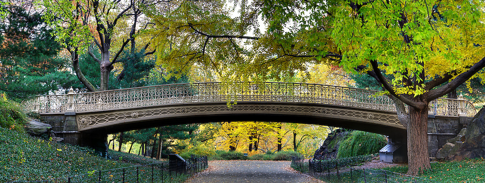 A Bridge located in Central Park in New York City.