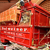 Budweiser Delivery Truck in Clydesdale Stable at Anheuser-Busch in St. Louis, Missouri<br /> Americans drink 20 gallons of beer per capita. The best-selling is pale lager and the top brewery is Anheuser-Busch. No wonder the Clydesdale horses became iconic. They began as a gift to the co-founder to celebrate the repeal of prohibition with the passage of the Twenty-first Amendment. Almost immediately after the new law was passed on December 5, 1933, the horses were hitched to a wagon and delivered free, legal beer to politicians in major cities. Now the team has grown to 250 horses. The Dalmatians were added in 1950. You can see these wonderful animals in their stables during a tour of the Anheuser-Busch Brewery in St. Louis, Missouri.