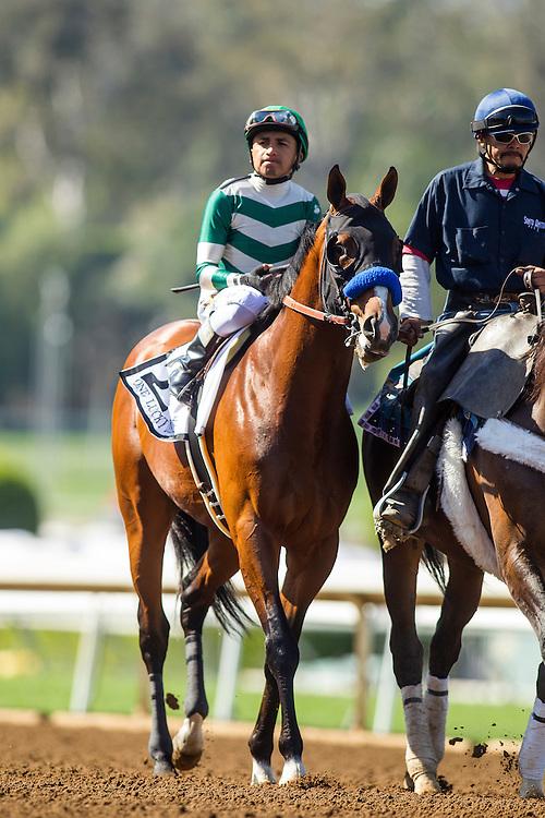 April 04 2015: One Lucky Dane with Rafael Bejarano at the Santa Anita Derby at Santa Anita Park in Arcadia CA. Alex Evers/ESW/CSM