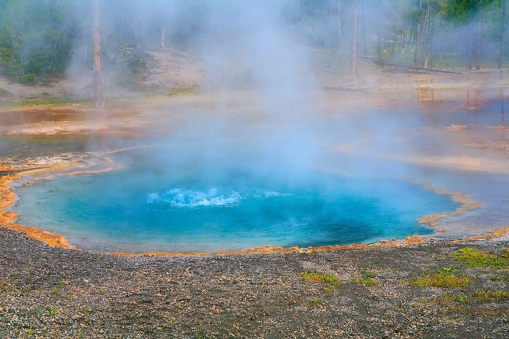 Bubbling Geyser Pool - Yellowstone National Park