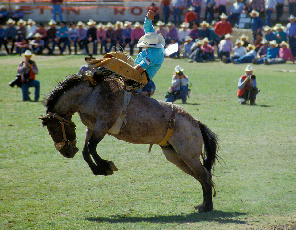 how to get into bronc riding