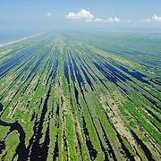 """Las """"barras paralelas"""" son una singular formación geológica de la Reserva de la Biosfera Marismas Nacionales Nayarit."""