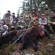 It was 123 years since the last bear was shot, when this male bear was shot in Selbu, Norway, in 2009. Hannbjørnen på 199 kg som ble felt i Flora i Selbu i oktober 2009 skal ha vært første bjørnefelling siden 1886.