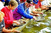 Alaska. Fairbanks. Visitors learn to pan for gold at El Dorado gold mine.