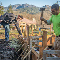Justin Muir (left) and Scott Liedl, of Robert's Construction, prepare the foundation forms for  a new home along Foothill Drive in Calistoga