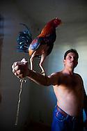 Man with fighting cock in Bocas, Holguin, Cuba.