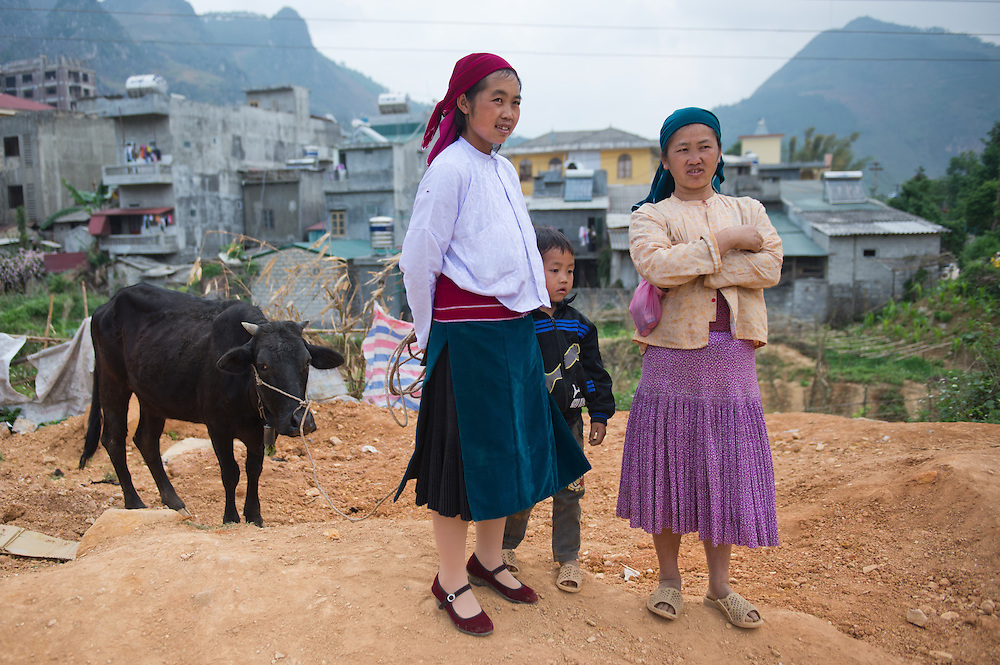 On their way to sell their beef at the market in Don Vang, Vietnam.