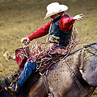 Giddy Up--Fairs and Rodeos