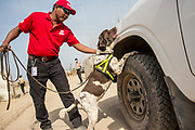 &quot;I like my job because I love dogs and love working with them. I have a background in security, but working with dogs is what I really love,&quot; &ndash; Suresh Pradhan, UNMAS Explosive Detection Dog Handler and Astar, a six-year old English Springer Spaniel.<br /> <br /> Photo: UNMAS/ Martine Perret