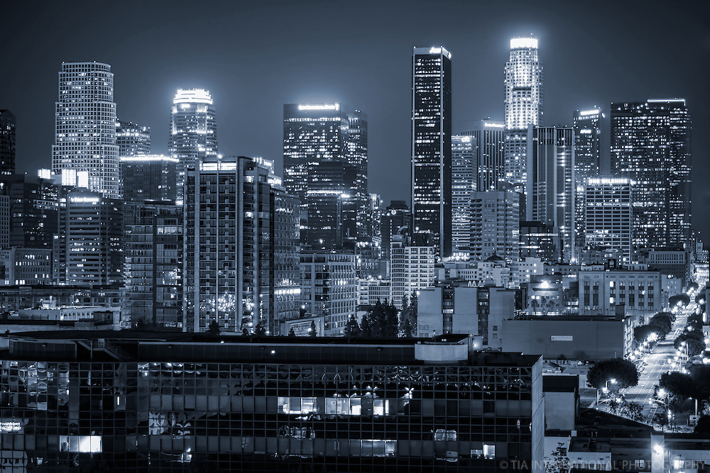 Los Angeles Skyline @ Night