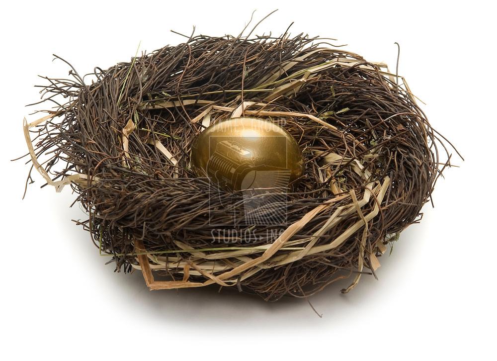 Golden egg inside a nest on white background