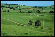 AUSTRALIA 60101: RURAL NSW