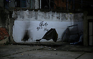 A dog plays with a bed sheet at the IBGE abandoned building in Rio de Janeiro, Brazil, April 25, 2015. Photo/Pilar Olivares