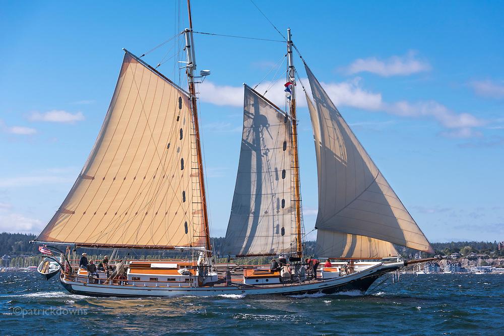 Wooden Boat Festival 2016, Port Townsend WA<br /> <br /> Schooner &quot;Spike Africa&quot; in the schooner race.