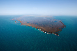 Aerial view of the reef on the south side of Adele Island on the Kimberley coast of Western Australia.