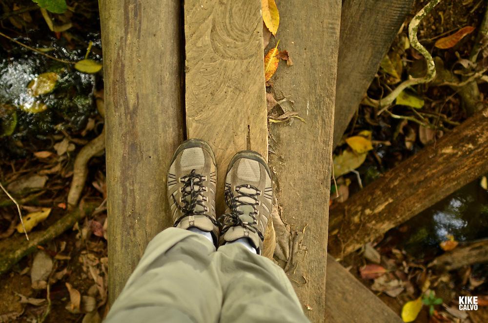 Traveler exploring Pargo Trail at Corcovado National Park.