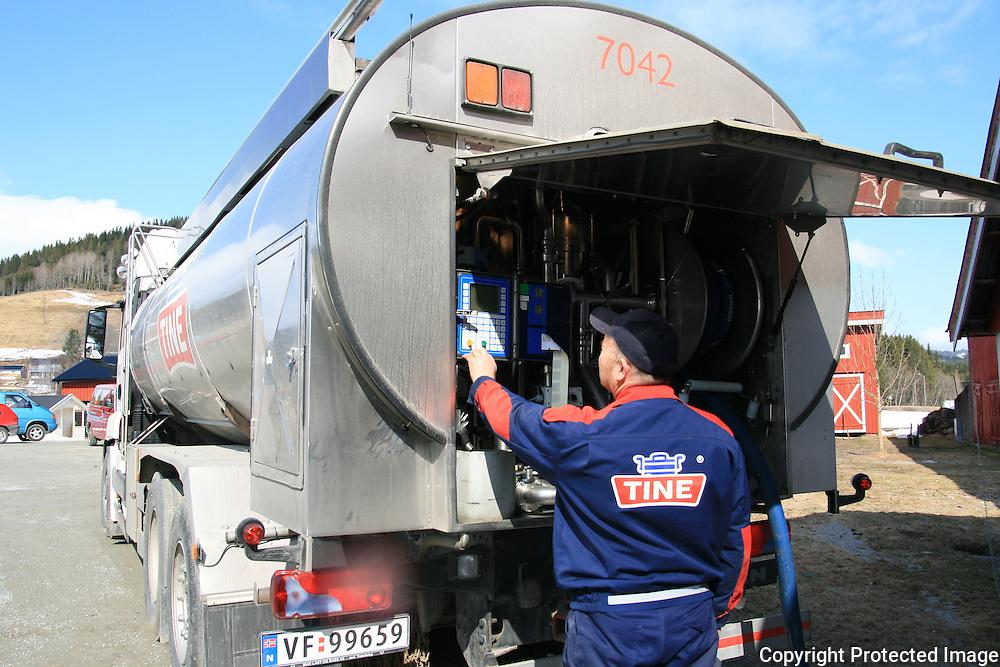 Melkbil fra Tine henter melk hos Bente Setsaas på Selbustrand. Foto: Bente Haarstad