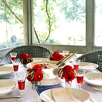 home, house, interior, lifestyle, decor, design, garden