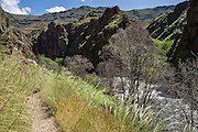 "Imnaha River Trail at ""the end of the road,"" in Hells Canyon National Recreation Area, Wallowa-Whitman National Forest, north of Imnaha, Oregon, USA. The entire river is designated Wild and Scenic."