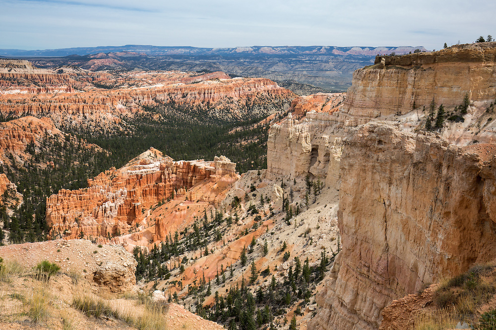 The orange hoodoos in the amphitheatre of Bryce Canyon National Park in Utah