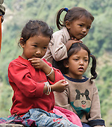 Children encountered near Samrung & New Bridge, between Tolka and Chhomrung (or spelled Chomrong), a Gurung tribal area in the Annapurna Range of Nepal Himalaya mountains, on the trail to the Annapurna Sanctuary.