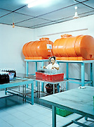 Filling bottles at a fish sauce factory.
