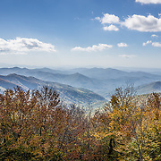 "Atop the Unicoi Mountains in Tennessee, USA, the Cherohala Skyway reveals far-reaching views at Big Junction (5240 feet elevation) here in the Blue Ridge Mountains, a subset of the Southern Appalachian Mountains. Vibrant fall foliage colors start appearing in mid October at the highest elevations of Cherohala Skyway. Long in planning since 1958, the Cherohala Skyway opened to automobile traffic in 1996 – a new National Scenic Byway. The Skyway climbs over 4000 feet, starting at elevation 900 feet along Tellico River and reaching 5400 feet on the slopes of Haw Knob in North Carolina. The 43-mile paved road of the Cherohala Skyway follows Tennessee State Route 165 (SR-165 or TN 165) for 25 miles from Tellico Plains to the state line at Stratton Gap, then continues on North Carolina Highway 143 (NC 143) for 18 miles to Robbinsville. Cherohala combines the names of the two National Forests traversed: ""Chero"" from Cherokee and ""hala"" from Nantahala NF. The Skyway accesses various protected and recreational areas including Citico Creek Wilderness, Bald River Gorge Wilderness, and Joyce Kilmer Memorial Forest."