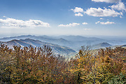 """Atop the Unicoi Mountains in Tennessee, USA, the Cherohala Skyway reveals far-reaching views at Big Junction (5240 feet elevation) here in the Blue Ridge Mountains, a subset of the Southern Appalachian Mountains. Vibrant fall foliage colors start appearing in mid October at the highest elevations of Cherohala Skyway. Long in planning since 1958, the Cherohala Skyway opened to automobile traffic in 1996 – a new National Scenic Byway. The Skyway climbs over 4000 feet, starting at elevation 900 feet along Tellico River and reaching 5400 feet on the slopes of Haw Knob in North Carolina. The 43-mile paved road of the Cherohala Skyway follows Tennessee State Route 165 (SR-165 or TN 165) for 25 miles from Tellico Plains to the state line at Stratton Gap, then continues on North Carolina Highway 143 (NC 143) for 18 miles to Robbinsville. Cherohala combines the names of the two National Forests traversed: """"Chero"""" from Cherokee and """"hala"""" from Nantahala NF. The Skyway accesses various protected and recreational areas including Citico Creek Wilderness, Bald River Gorge Wilderness, and Joyce Kilmer Memorial Forest."""