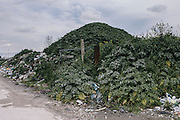 A mound of toxic materials covered by vegetation hides the poison beneath. This pile, containing open chemicals and asbestos was less than a mile from a US Navy base's high school field.